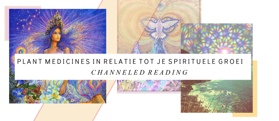 Channeled Reading nu Online!